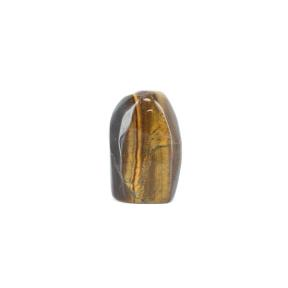 Tiger Eye Freeform 2